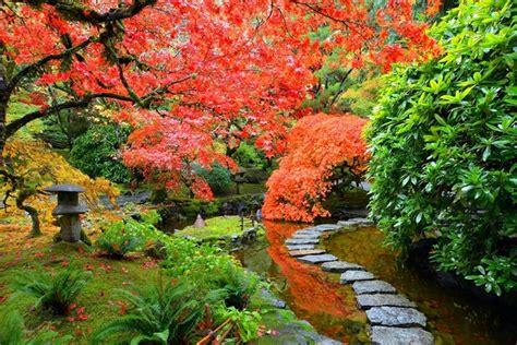 japanese garden plants awesome japanese garden design ideas