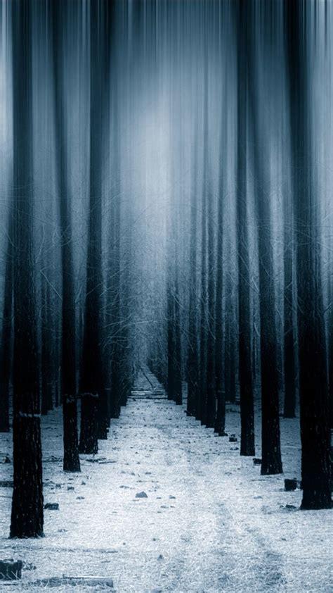 dark forest woods snow winter  vv wallpaper
