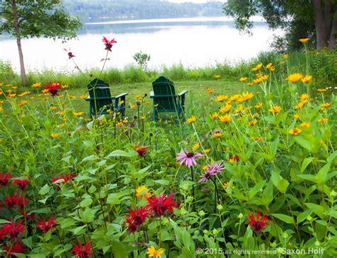summer gardening end of summer photo contest