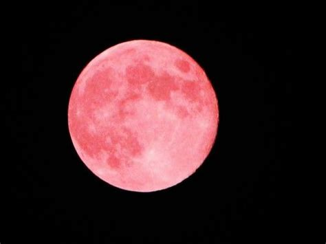 pink moon meaning 25 best ideas about pink moon on pinterest super moon