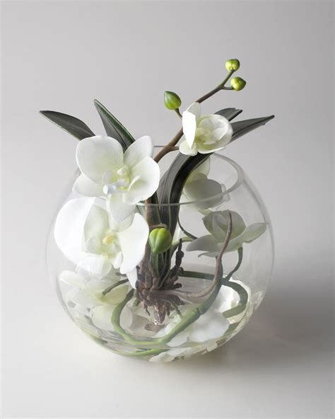 Orchid Arrangements In Vases by 17 Best Ideas About Orchid Arrangements On