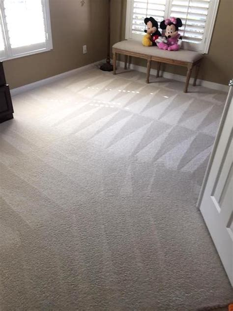 cheap couch cleaning cheap carpet cleaning orlando carpet menzilperde net