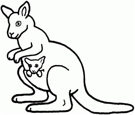 kangaroo coloring page cute coloring home