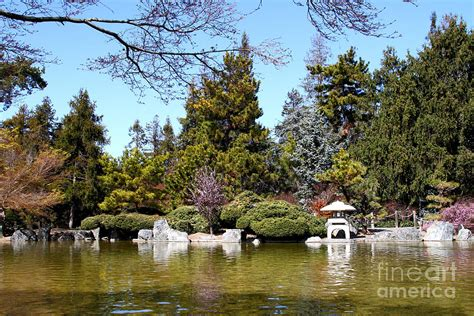 japanese friendship garden san jose california 7d12782