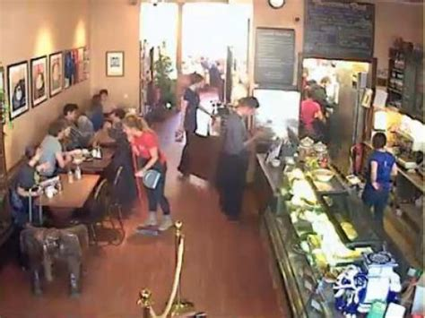 elephant house live streaming hd bar cam