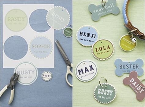 id tag 12 easy and fun diy pet projects lifestyle