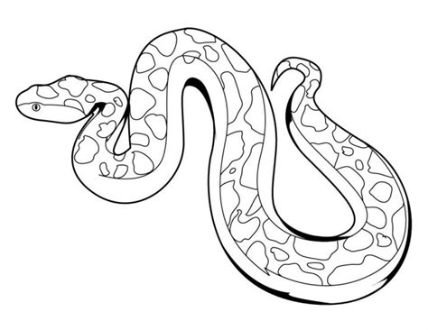 animal coloring pages snake snake coloring pages animals 12118 bestofcoloring com