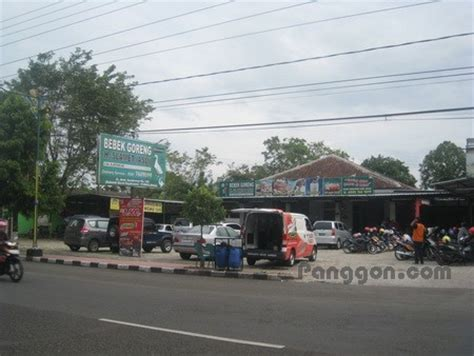 Kopi Ginseng K Link alamat telepon rumah makan bebek goreng h slamet