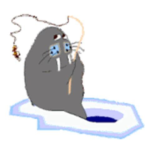 imagenes de leones gif imagenes animadas de leones marinos y morsas