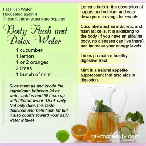 Janet And Greta Detox Water by Flush Detox Water Healthy Ideas