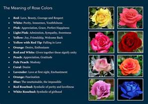 flower color meaning awesome quotes the meaning a flower s color