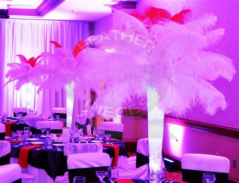 Pictures For Rent Ostrich Feather Centerpieces By Ostrich Feather Centerpieces For Rent