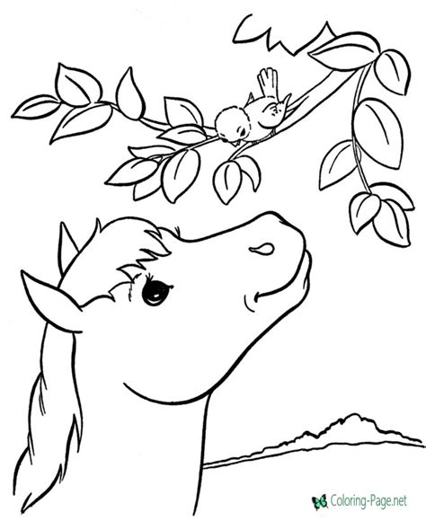 html to printable page printable horse coloring pages