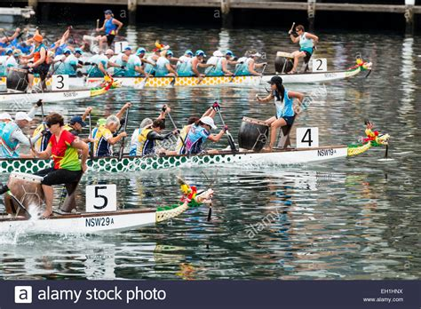 parts of a dragon boat dragon boat race stock photos dragon boat race stock