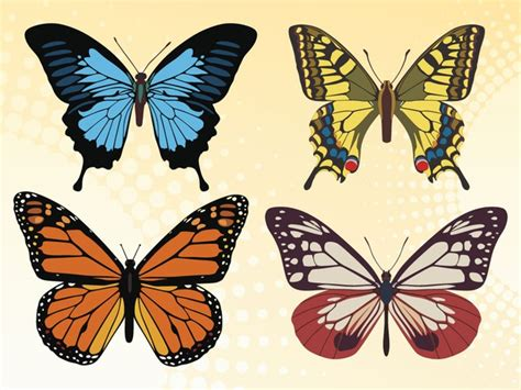 butterfly colors colorful butterfly vector set