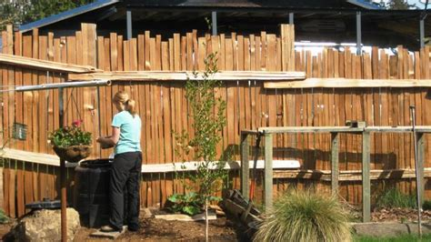 simple and easy backyard privacy ideas midcityeast backyard privacy ideas very simple radionigerialagos com