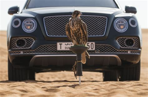 bentayga mulliner bentley bentayga falconry by mulliner is for the birds