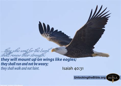mount up on wings like eagle isaiah 40 31 www