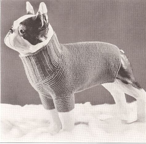 free pattern knit dog sweater easy vintage antique dog sweater knitted knitting pattern