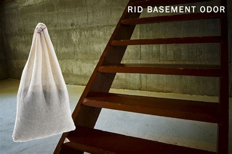 how to get rid of basement smell