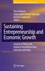 sustaining entrepreneurship and economic growth lessons