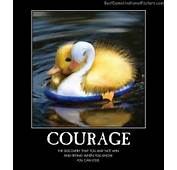 Almost Scared Courage Try Never Give Up Best Demotivational Posters