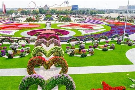 dubai miracle garden is one of the most amazing things we