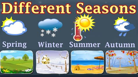 first facts seasons weather different seasons learn about autumn winter spring summer preschool activity youtube