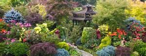 plantes pour jardins japonais jardiniers professionnels
