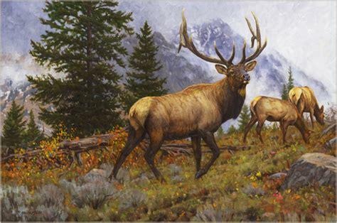elk rocky mountain elk painting by wildlife artist bruce miller wildlife deer