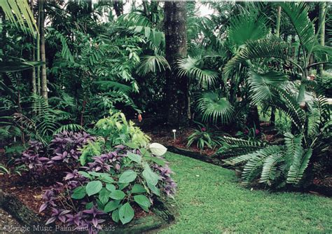 Palm Gardens by Palm Gardens Part 2
