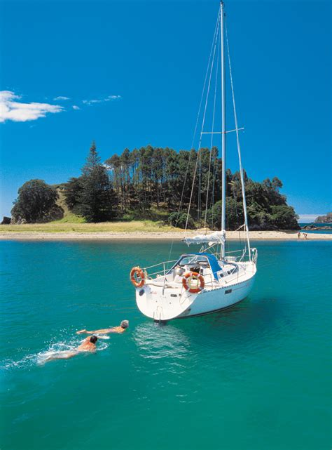 of island gallery bay of islands travel guide new zealand
