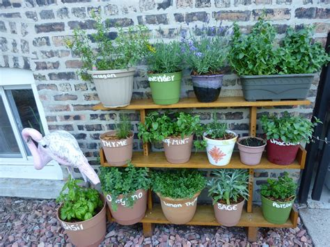 herb pots outdoor pallet herb garden is the solution for limited space