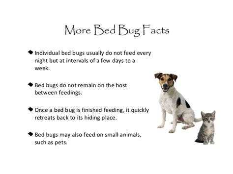 bed bugs  schools