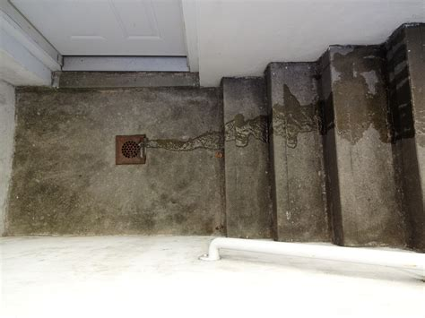 Basement Floor Drain Backing Up Preventing And Remedying A Basement Drain Backing Up