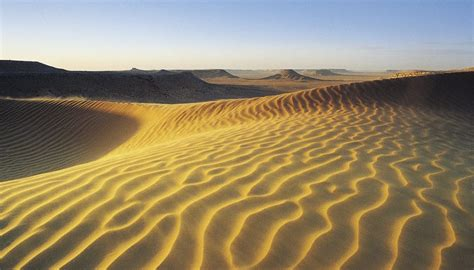 Landscape Environment Definition Types Of Desert Soil Sciencing