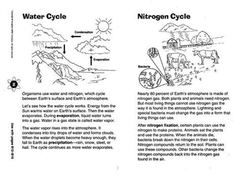 Science Worksheets Middle School by Zola D Science Chapter 8 Diagram Of The Water Cycle