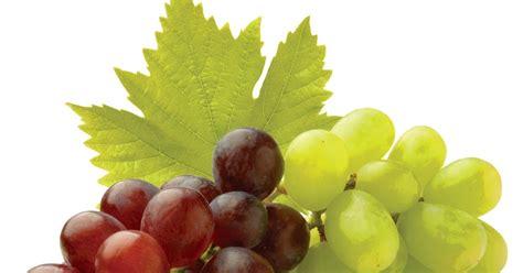 fruit 08 grape grape fruits and vegetables