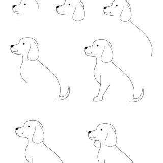 learn how to dogs this how to draw a step by learn drawing litle pups