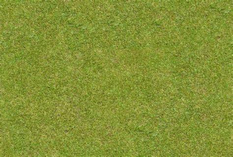 grass pattern website 23 free seamless grass textures freecreatives