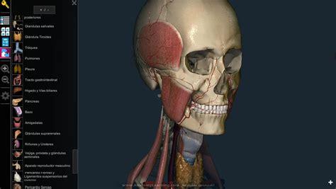 imagenes en 3d del cuerpo humano anatomy learning 3d atlas aplicaciones android en