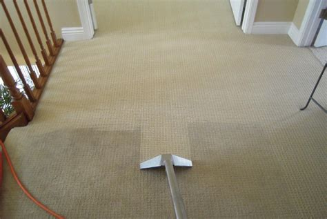 cost of rug cleaning the pros cons costs of carpet cleaning services