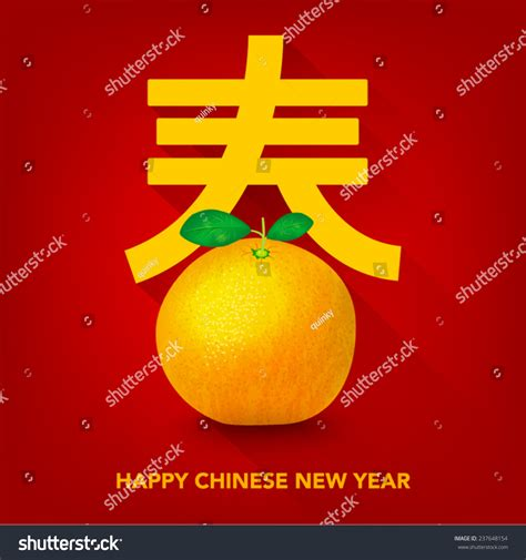 orange meaning in new year new year mandarin orange vector design