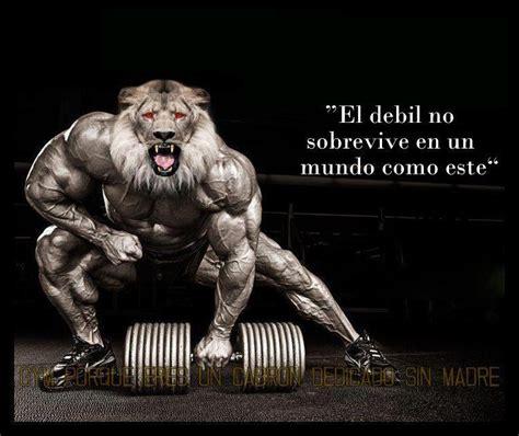 imagenes emotivas de gym im 225 genes motivaci 243 n gym t fitness taringa
