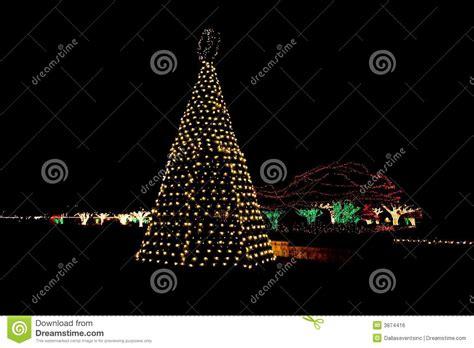 outdoor christmas tree lights stock photo image 3874416