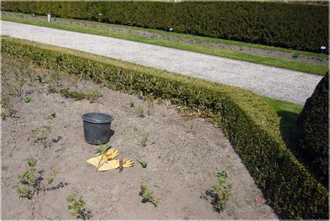 Britzer Garten Kalender by Schr 246 Der Kalender 187 Parkarbeiter In Britz
