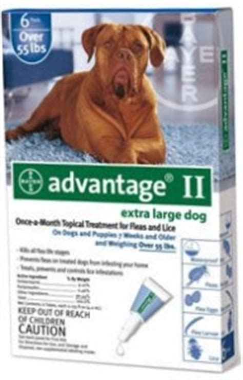 advantage for dogs 55 lbs advantage ii for large dogs 55 lbs 6 pack blue
