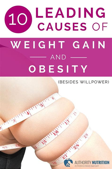 10 Causes Of Obesity by 10 Leading Causes Of Weight Gain And Obesity Besides