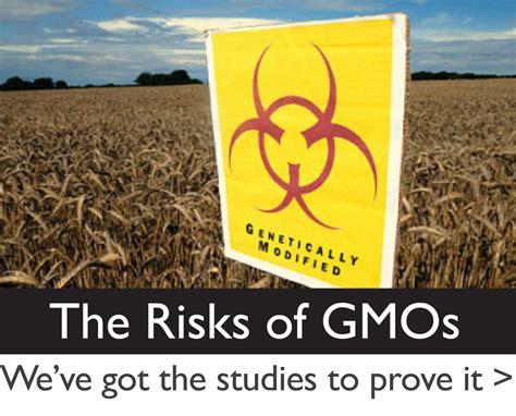 the health risks of genetically modified gmo foods gmo risks gmo awareness