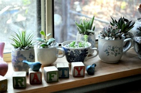 Indoor Succulent Planter by Top 30 Planters Diy And Recycled